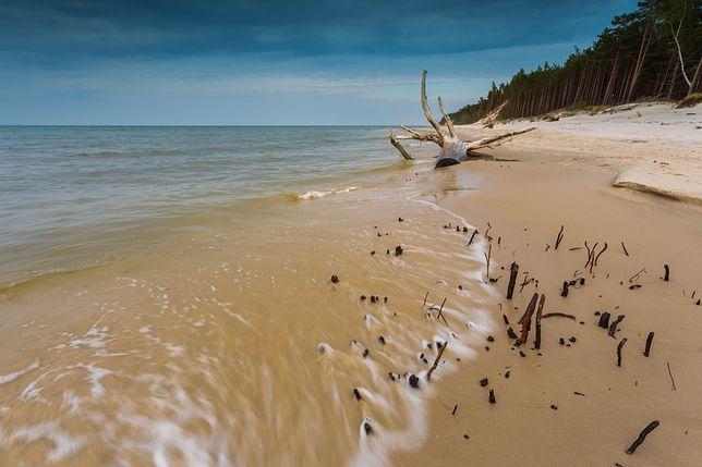 Plaża w Karwieńskich Błotach Drugich