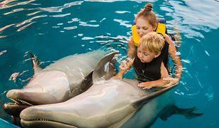 Delfinoterapia to ratunek dla niepełnosprawnych, małych pacjentów.