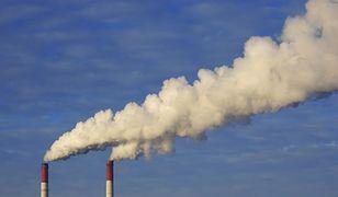 Biznes o sposobach zmniejszania ryzyk inwestycji związanych z klimatem