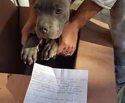 Zrozpaczony chłopiec oddał psa do schroniska. Poruszający list
