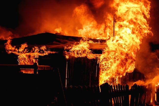 Bicz: pożar skansenu w okolicach Konina