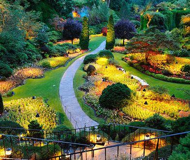 Odpowiednie oświetlenie podkreśli piękno ogrodu w każdym stylu
