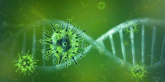 Superinfekcja, czyli podwójne zakażenie