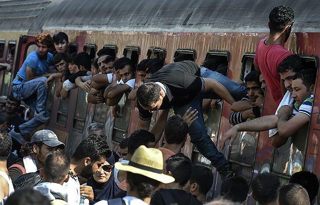 Węgierski problem z imigrantami. Partia Fidesz chce zaostrzyć prawo