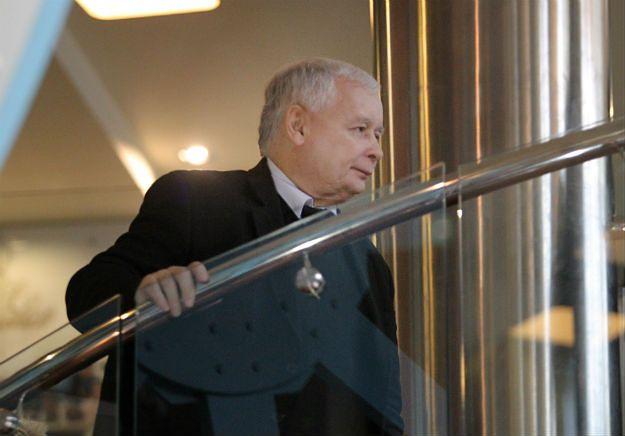 Jarosław Kaczyński zabrał głos w sprawie umowy CETA: obawy nie są uzasadnione