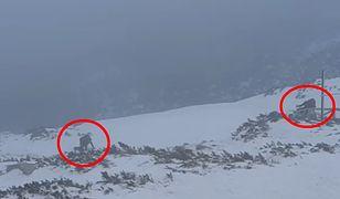 Karkonosze. Turyści zdobywali Śnieżkę mimo zakazu i trudnych warunków
