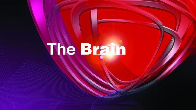 """""""The Brain - genialny umysł"""" już w marcu w Polsacie"""
