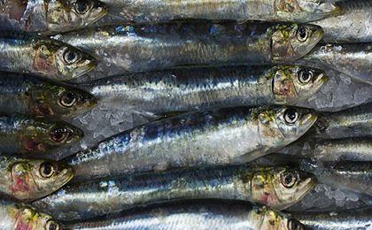 Spożycie ryb w Polsce rośnie dynamicznie