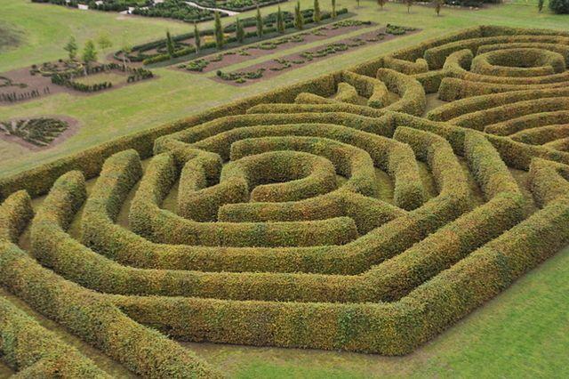Niezwykłe labirynty w Polsce - zobacz zdjęcia