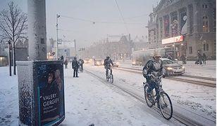 Śnieg zasypał Holandię