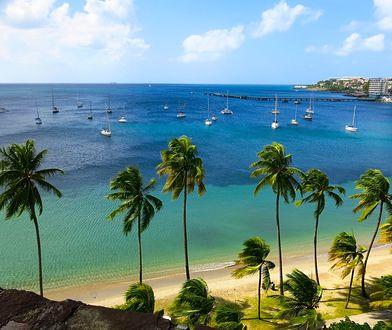 Rajskie wakacje na Karaibach. Tańsze niż myślisz
