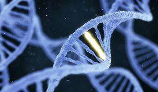 Chiny: Przyszły na świat genetycznie zmodyfikowane bliźniaki