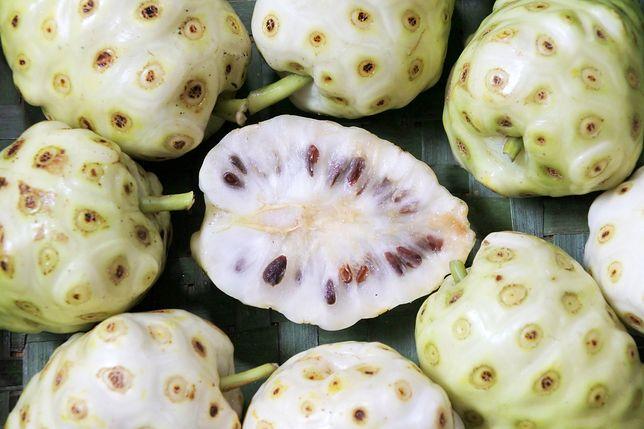 Owoc noni to inaczej morwa indyjska