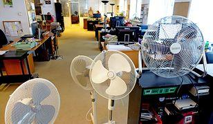 Ile prądu zużywa klimatyzacja, a ile wiatrak. Oto, który sposób jest tańszy