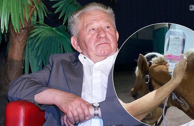 Gucwiński został oskarżony o znęcanie się nad koniem. Zwierzę uśpiono