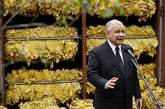"""Kaczyński krytykuje rząd. """"Biała flaga"""" nawet w rolnictwie"""