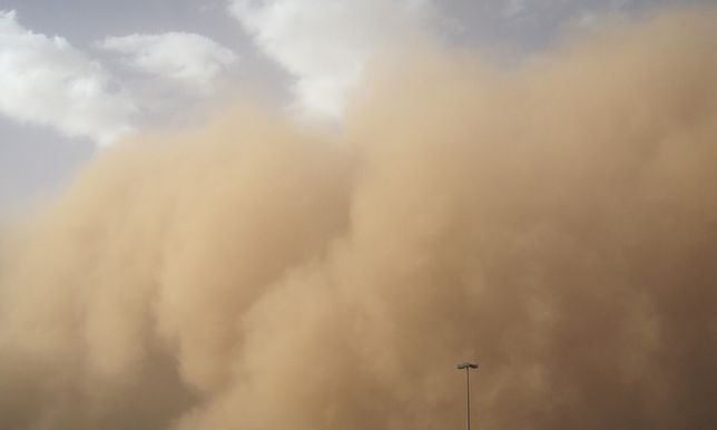 Saharan Air Layer (warstwa powietrza saharyjskiego).