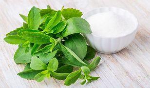 Stewia - alternatywa dla białego cukru