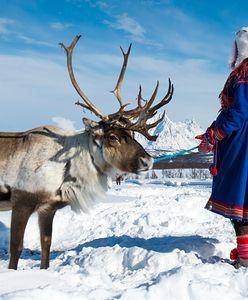 Jeden z najmniej znanych ludów Europy. Saamowie, czyli niezwykli mieszkańcy Północy