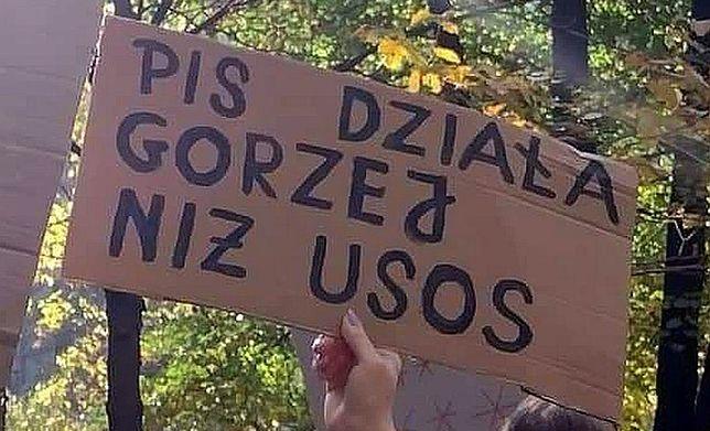 Transparenty na protestach hitem sieci