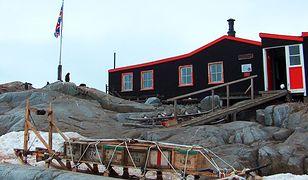 Port Lockroy na Antarktydzie