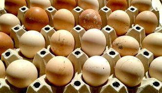 Wytłoczka jajek pełni ważną funkcję, o której nie pomyślałeś