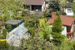 Spada liczba ogródków działkowych, a ich ceny rosną. Chętni są gotowi dużo płacić, nie bacząc na ryzyko
