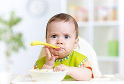 Dania dla dzieci HiPP. Firma wycofuje jeden ze swoich produktów. Powód: złe oznakowanie