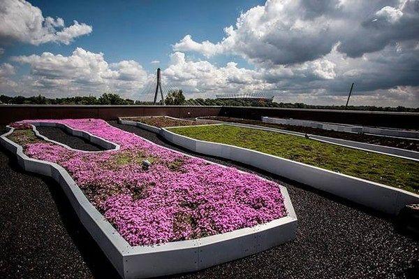 Tak wygląda ogród na dachu Centrum Nauki Kopernik