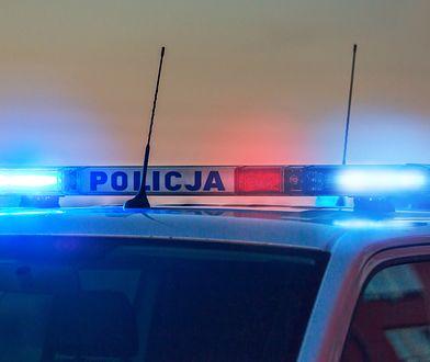 Syn posła KO został zatrzymany przez policję za posiadanie narkotyków. Usłyszał zarzuty