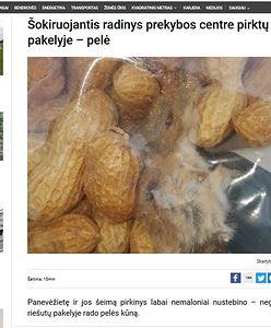 Martwa mysz w orzechach z litewskiego Lidla. Rodzina, która je kupiła, w szoku
