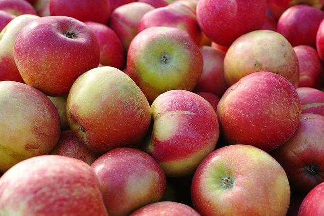 czerwone jabłka
