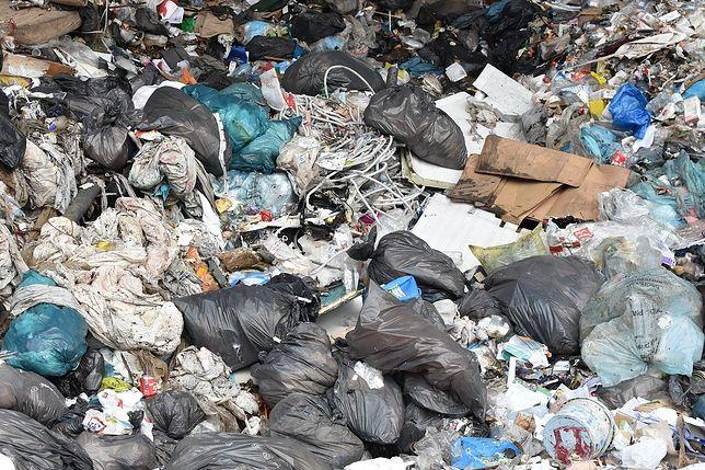 Sianów. Makabryczne odkrycie. Zwłoki noworodka na wysypisku śmieci (zdjęcie ilustracyjne)