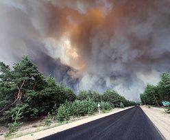Zaczęło się od suszy. Gigantyczny pożar na Ukrainie. Doszło do tragedii