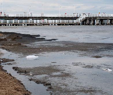 Kompleksowe badania wykazały, że z Polski do Bałtyku spływa najwięcej zanieczyszczeń