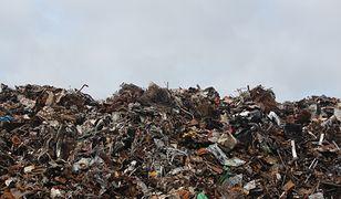 GZM przegrał sprawę przed Wojewódzkim Sądem Administracyjnym i budowa spalarni śmieci mocno się oddaliła.