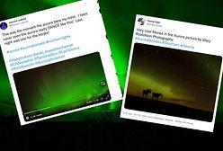 Zjawiskowa zorza polarna. Rozświetliła niebo na zielono