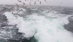 Pogoda nad morzem zaskoczy silnymi podmuchami wiatru. Na wodzie panować będzie sztorm, którego siła może osiągnąć aż 10 st. B.