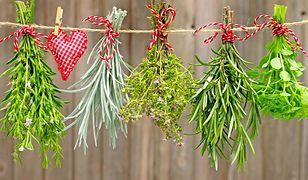 Rozpoznaj zioła i przyprawy na zdjęciu. Pytania mogą cię zaskoczyć