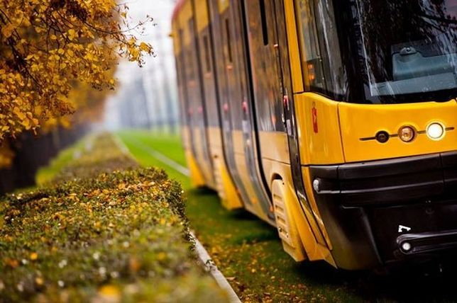 Prokuratura przejmuje sprawę pobicia profesora UW w tramwaju