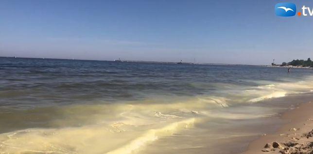 Żółty osad straszył plażowiczów