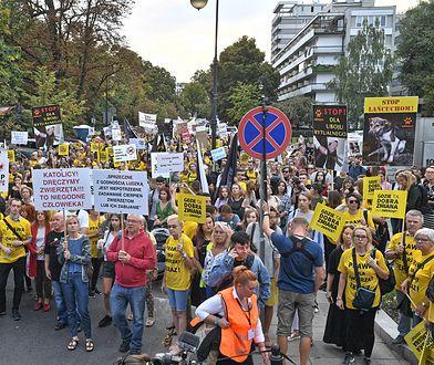 Obrońcy praw zwierząt w drodze przed Sejm