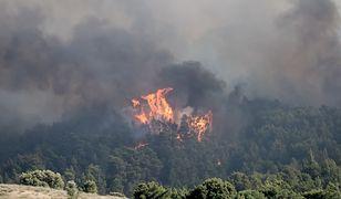 Piekło w greckim raju. Ogromny pożar na wyspie Rodos