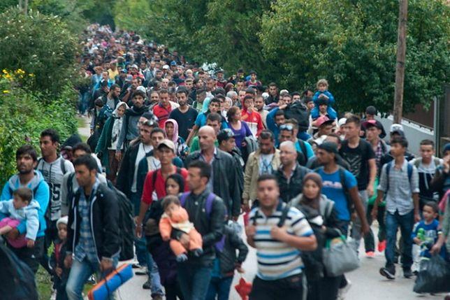 Czy Polska będzie miała obozy dla uchodźców? Błaszczak nie ma złudzeń