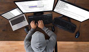 Jak pracują cyberprzestępcy? Mają swoje firmy, biura i dni wolne