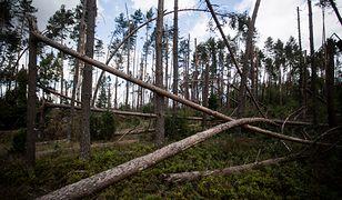 Nawałnica spustoszyła setki miejscowości w trzech województwach