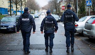 Zdjęcie ilustracyjne/Polska została odnaleziona w Katowicach