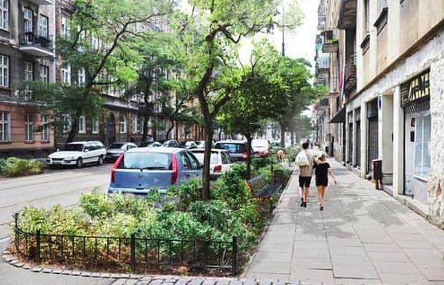 Warszawa. Zielona ulica Stalowa. O to walczyli aktywiści, którzy martwili się losem robinii akacjowych, którym szkodził beton