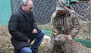 Putin z lampartem na kolanach