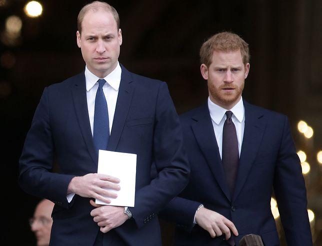 Książę William i książę Harry znowu działają razem.